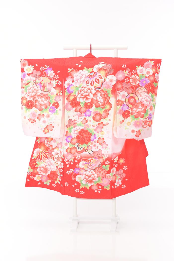お宮参りレンタル衣装No.457
